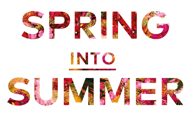 Spring into summer png. Campaign jd williams usa