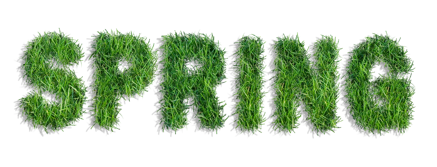Spring png. Of grass clipart gallery