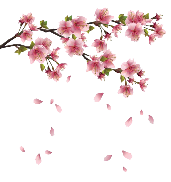 Spring png. Free image all