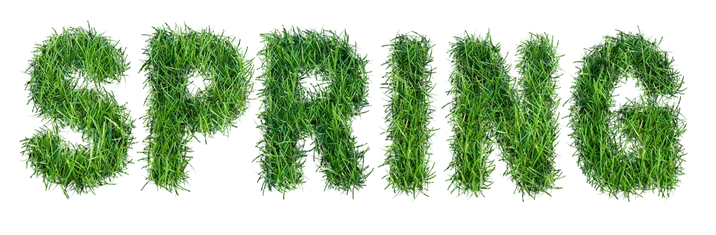 Spring text png. With grass clipart gallery