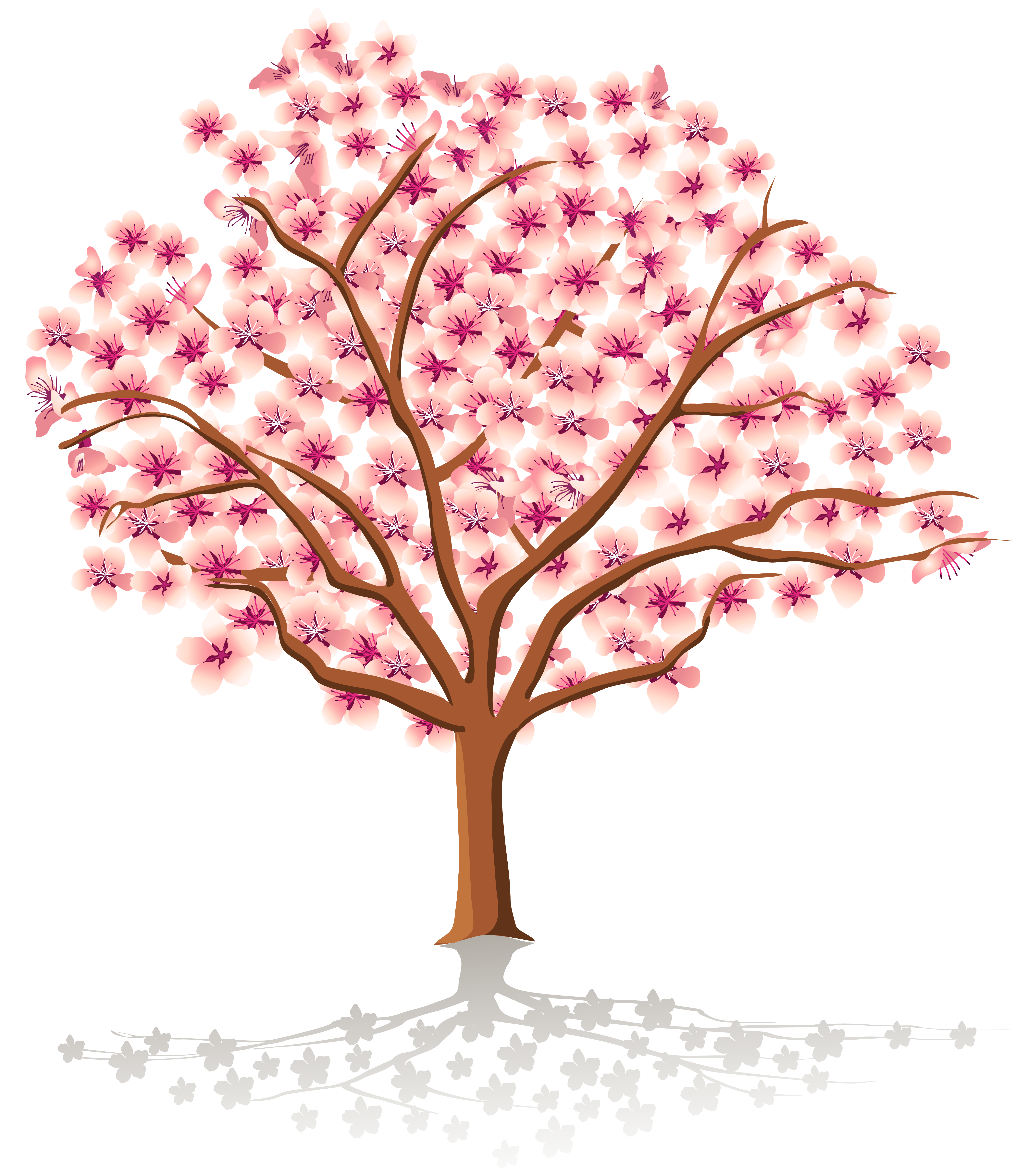 Spring tree png. Transparent clipart gallery yopriceville