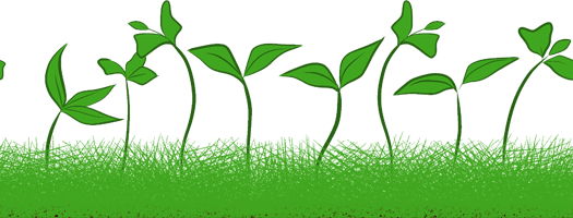 Sprout clip grass. Sprouts seamless web design