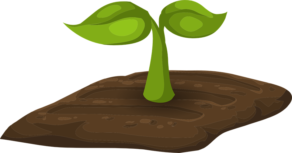 Sprout clip man. Plant art free cliparts