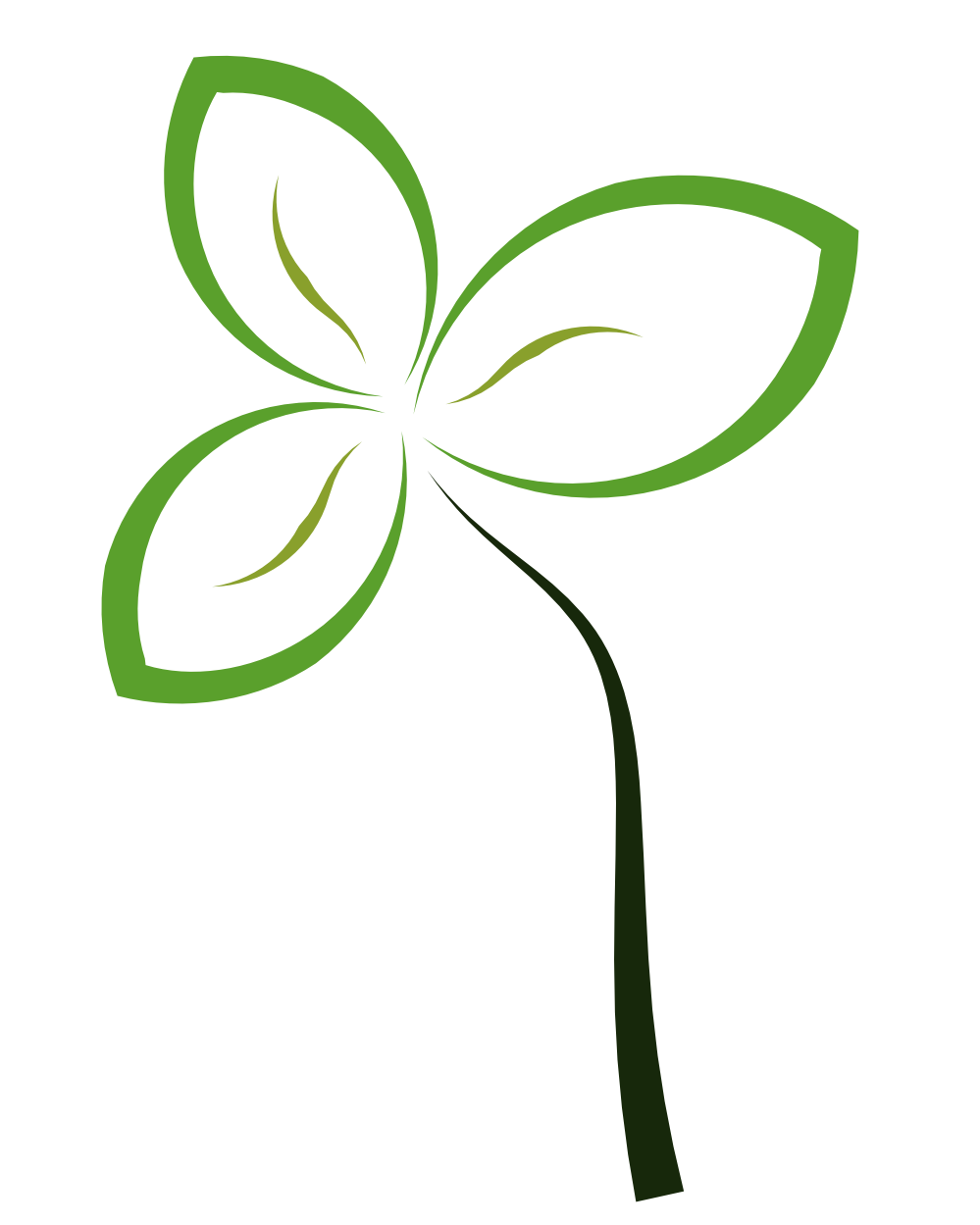 Abstract flower png. Free transparent images download