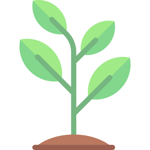 Sprout clipart transparent. Growing seed tree nature