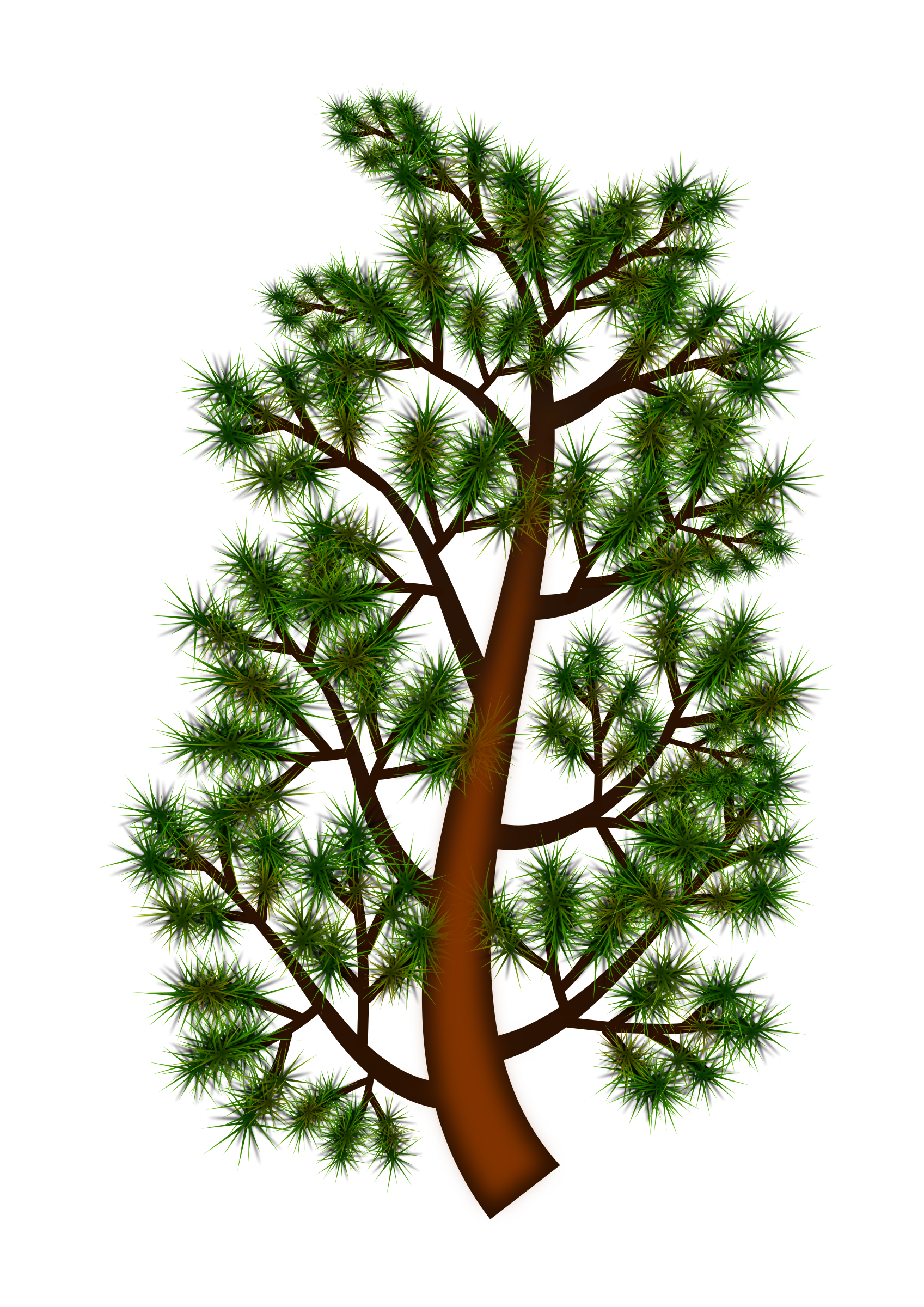 Pine tree branches png. Branch icons free and
