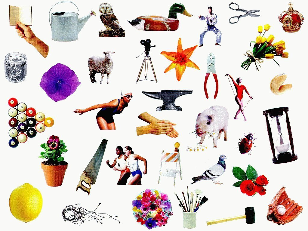 Spy clipart ispy. I catalog computer collages