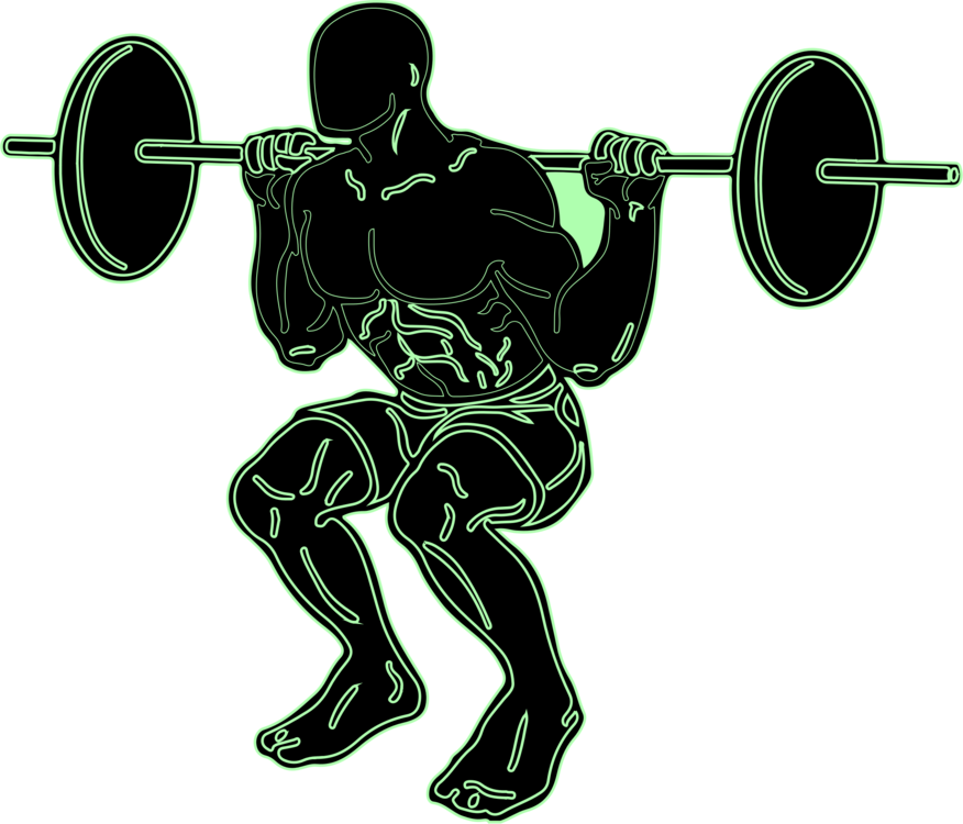 Squat vector clipart. Weight training physical fitness