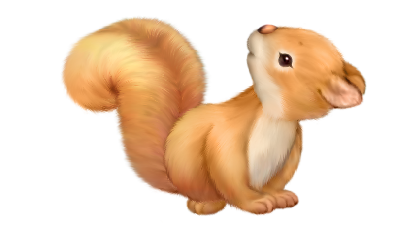 Squirrel clipart png. Cute free gallery yopriceville