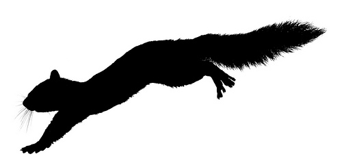 Squirrel clipart run. Silhouette of a at