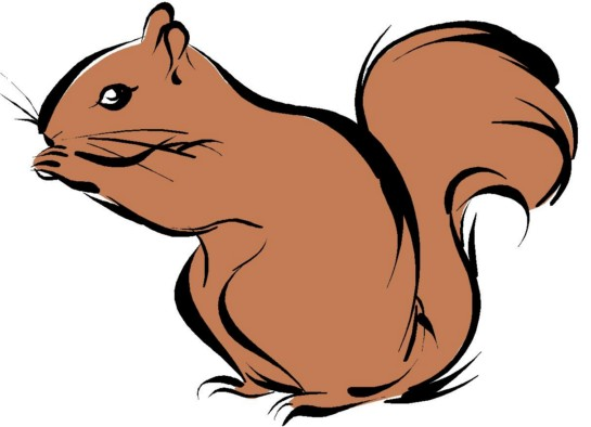 Squirrel clipart squirrel drawing. Let s start to