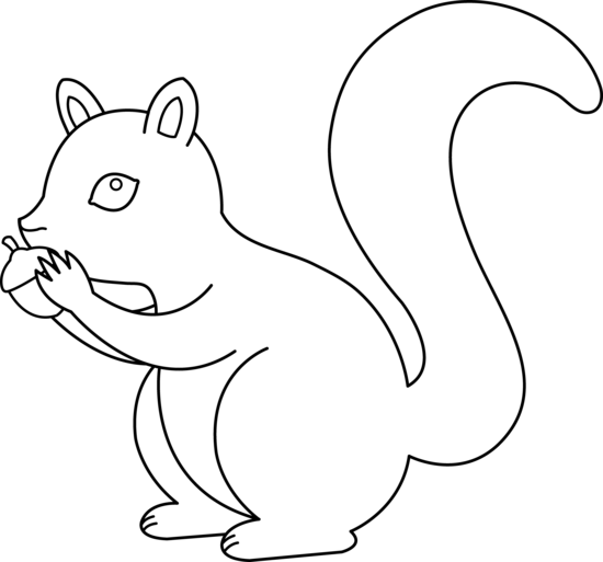 vector squirrel art