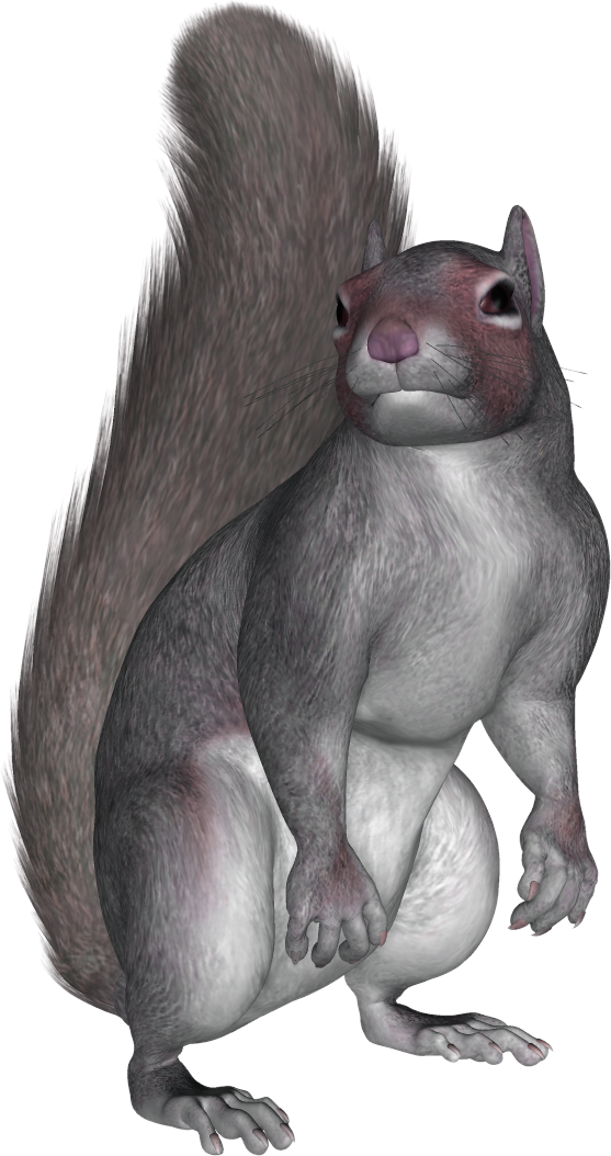 Squirrel .png. Sitting png by pvs