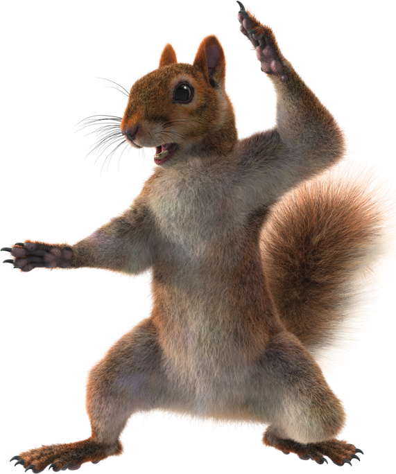 Squirrel with arms out png. The rodent encyclopedia spongebobia