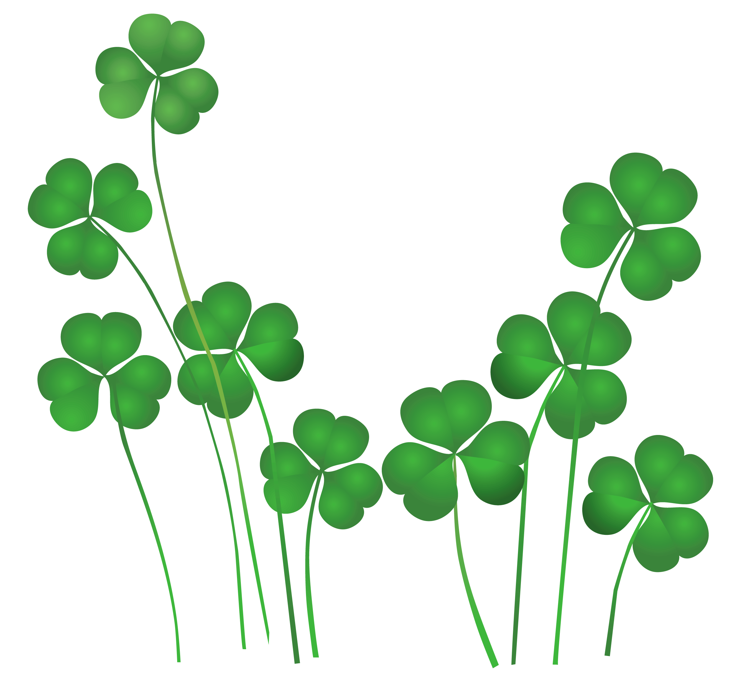 St patrick's day clover png. Patrick s shamrocks transparent