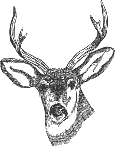 Stag vector abstract. Deer head clip art