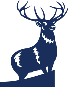 Stag vector mousedeer. Search mouse deer logo