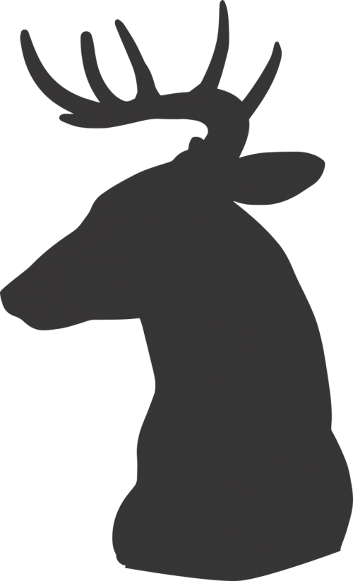 Stag vector stylized. Free photos silhouette search