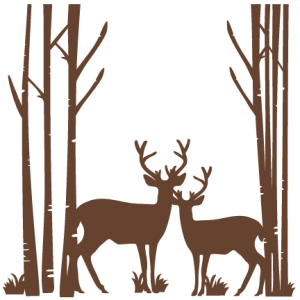 Stag vector svg. Birch trees with deer