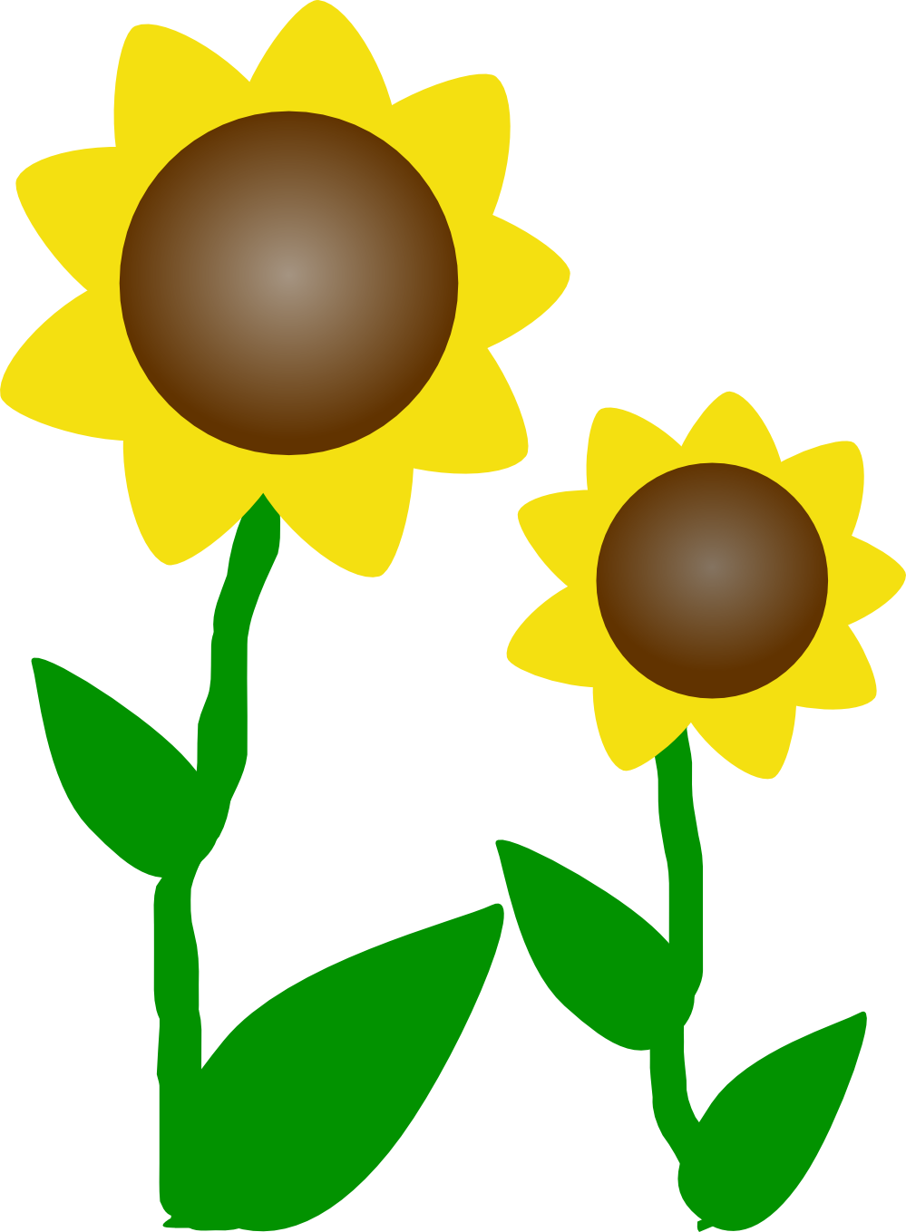 Sunflower clipart tall sunflower. Stalk image free