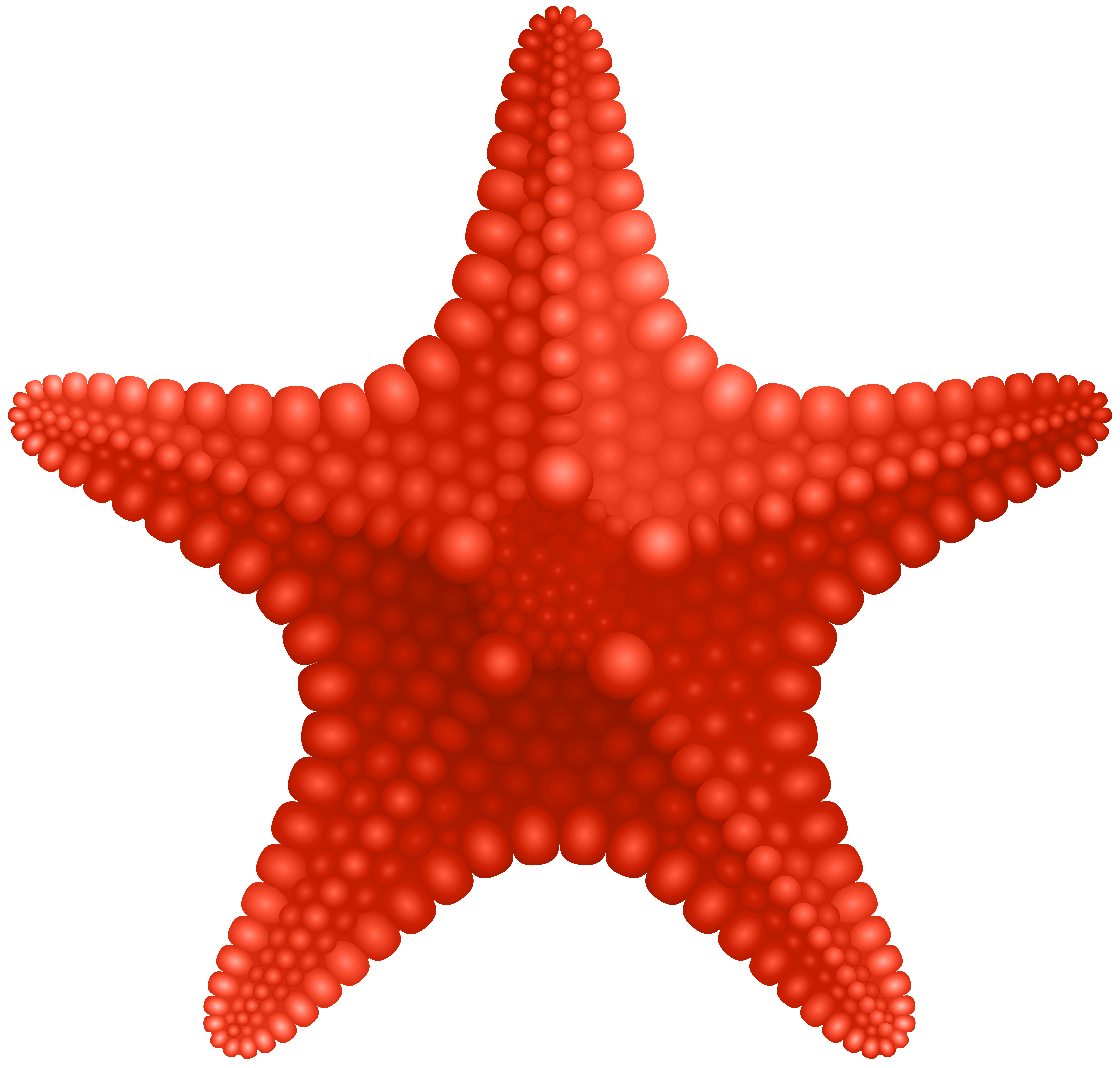 Starfish png. Clip art image gallery