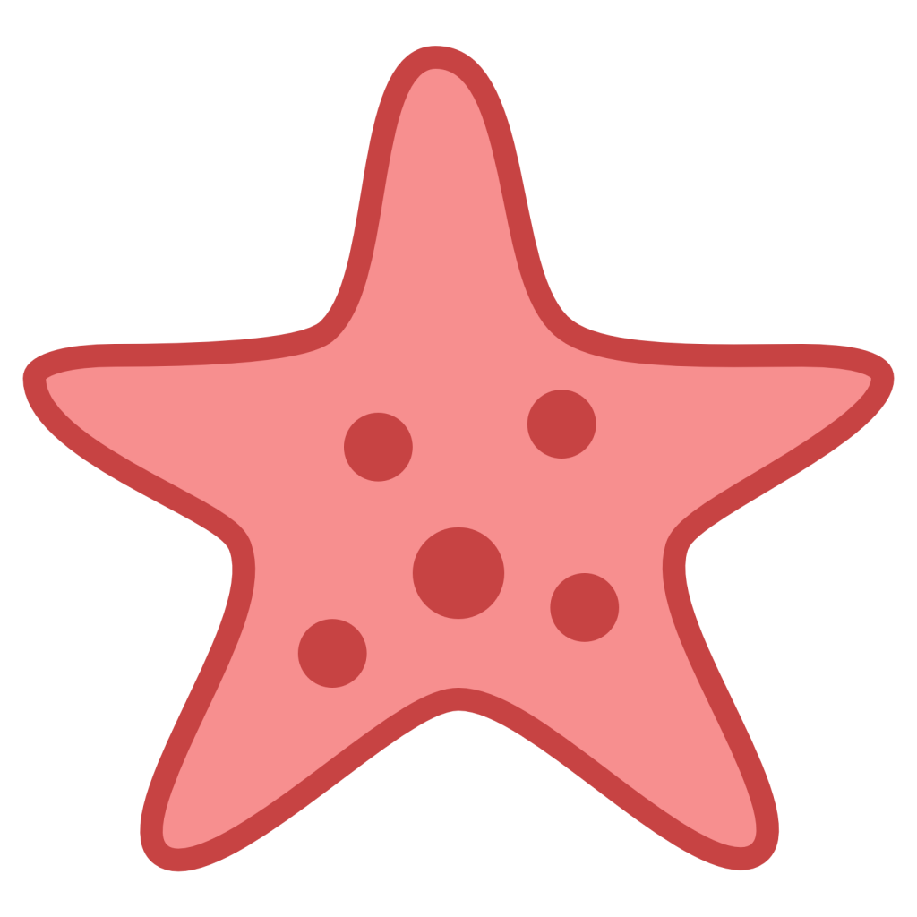 Starfish png. Picture vector clipart psd
