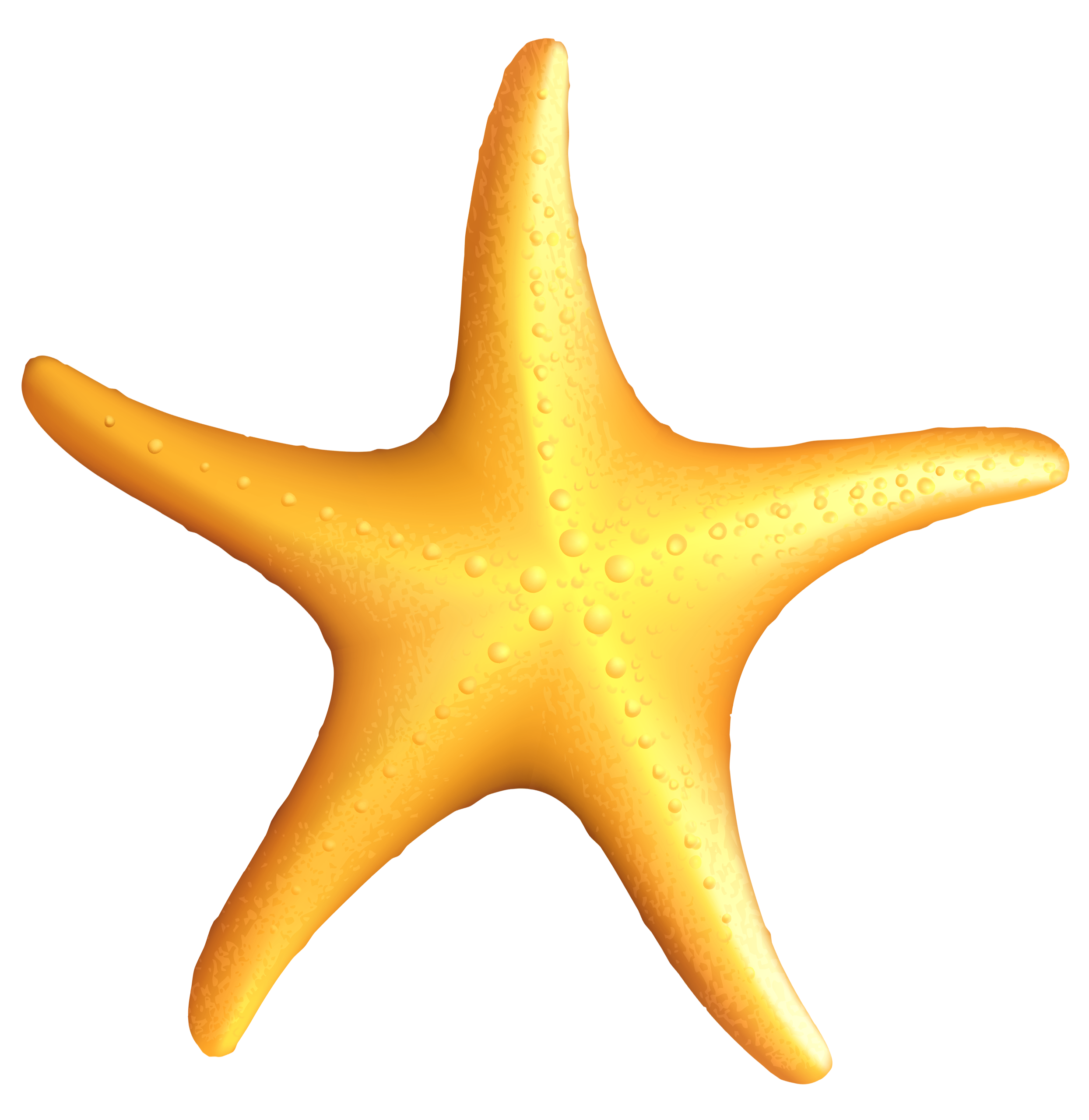 Starfish clip art png. Transparent beach clipart gallery
