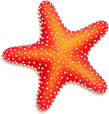 Starfish clipart star shaped object. Free