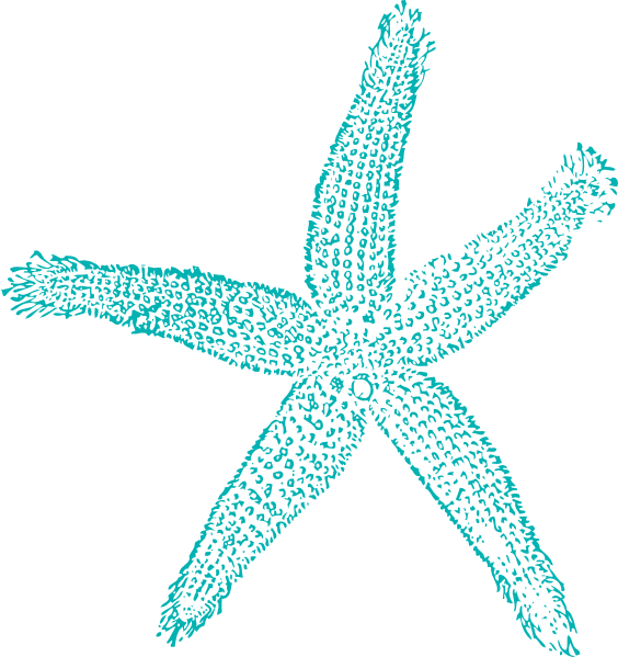 Starfish clipart star shaped object. Tan frames illustrations hd