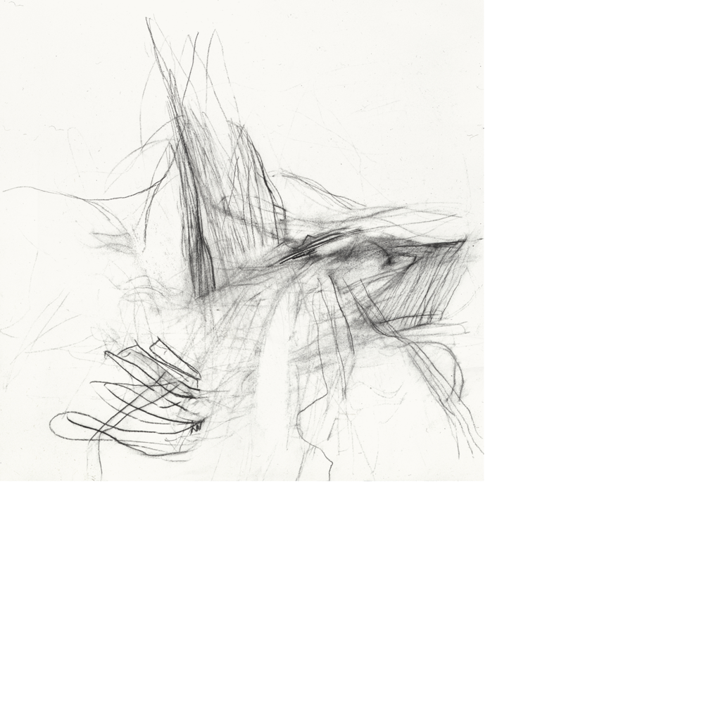 Static drawing charcoal. Christine hiebert untitled s