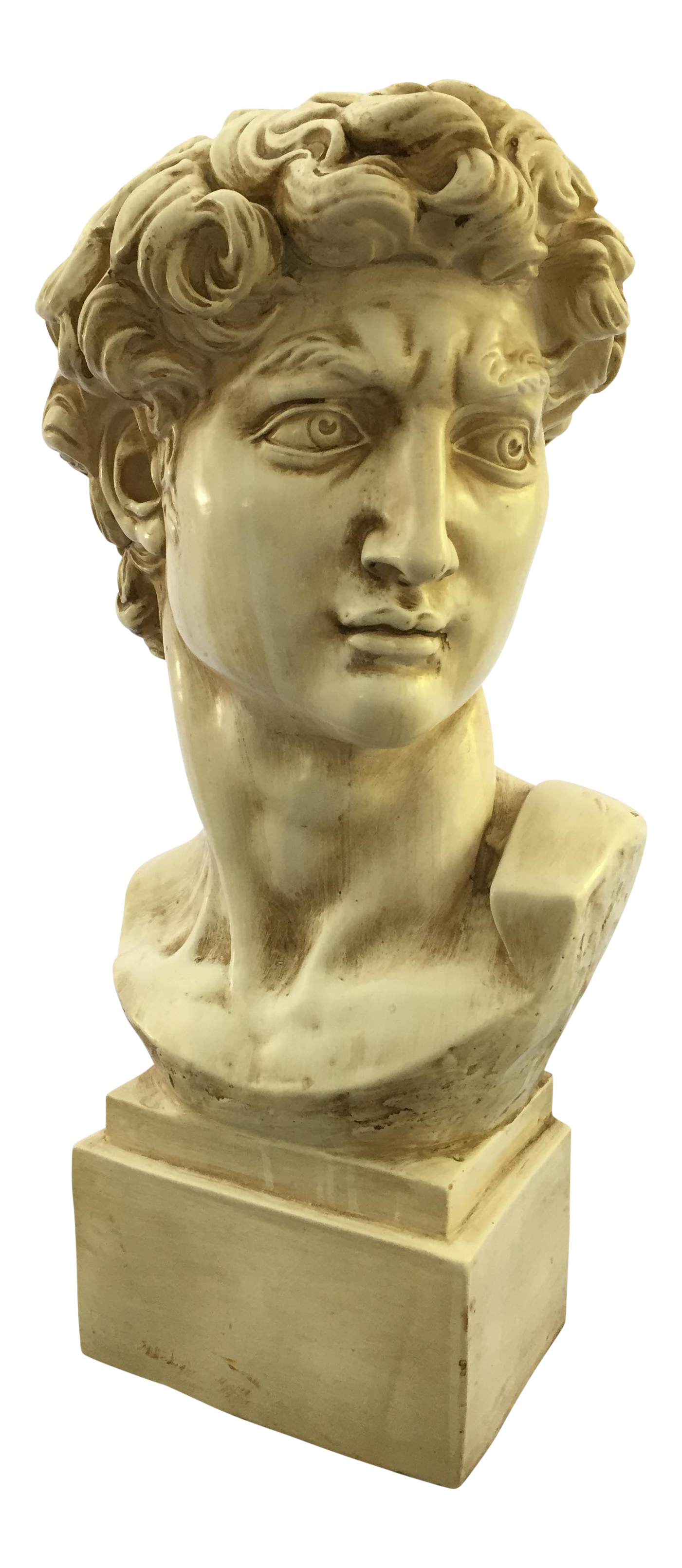 Statue bust png. David sculpture chairish