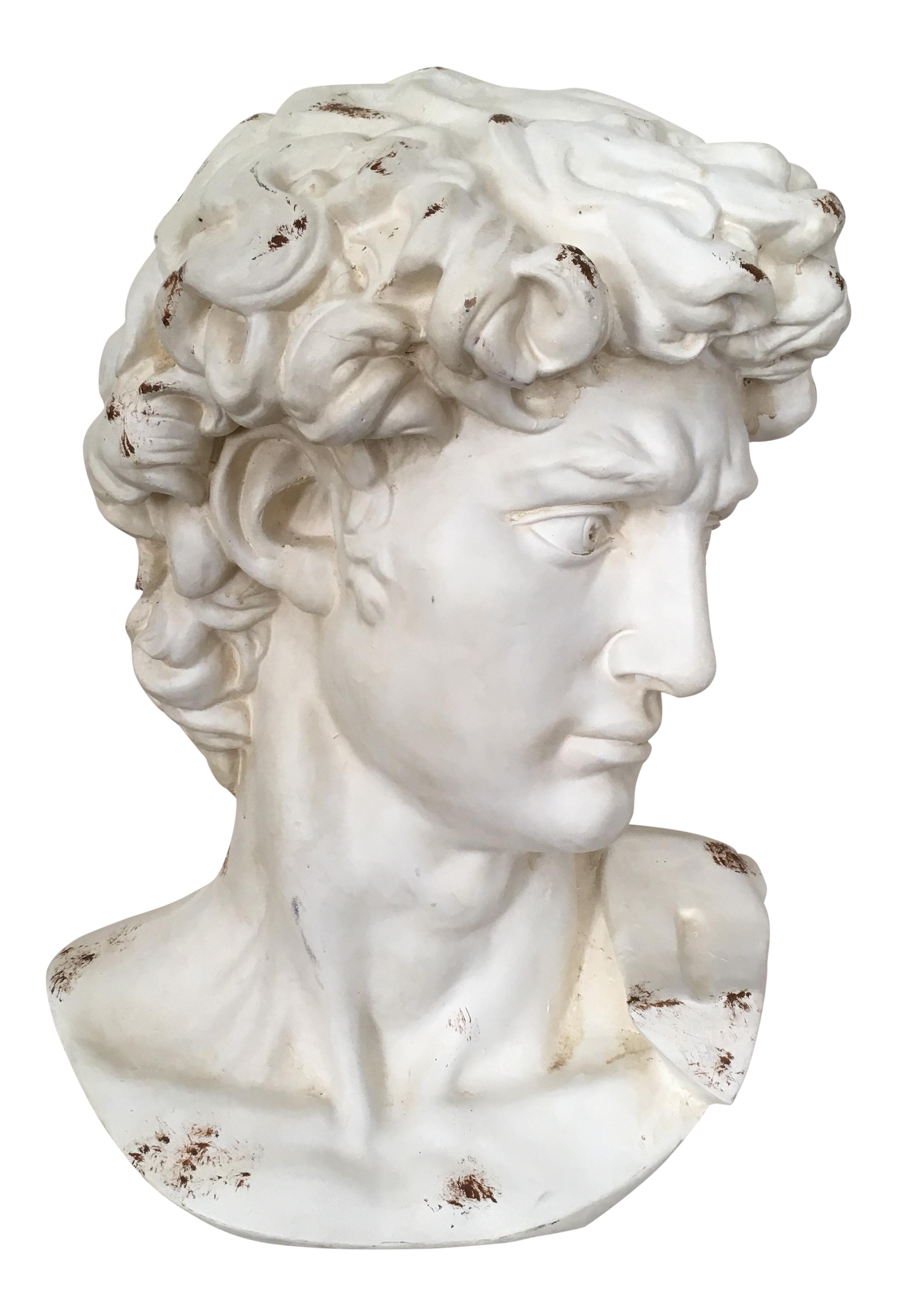 Statue of david png. Plaster bust chairish