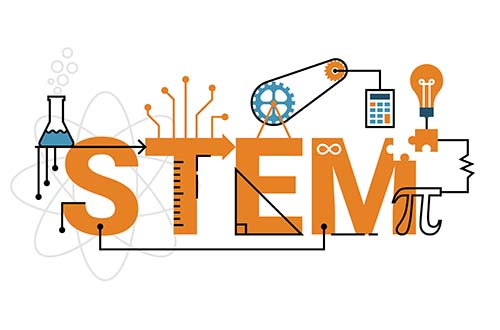 Steam clipart steam education. Stem vs what s