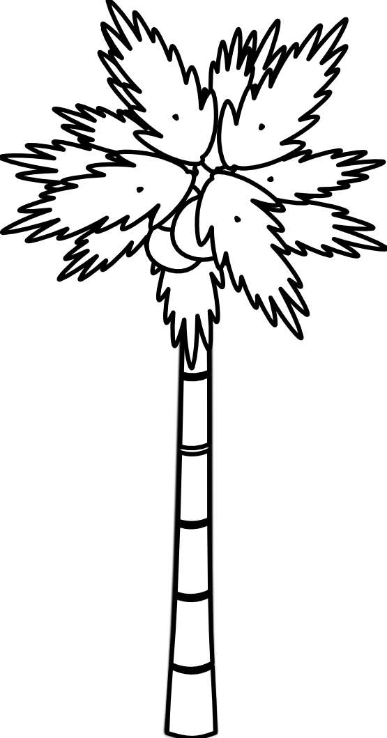 Stem drawing palm tree. Easy at getdrawings com