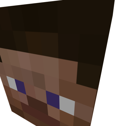 It's just a photo of Minecraft Steve Head Printable intended for minecraft blonde hair