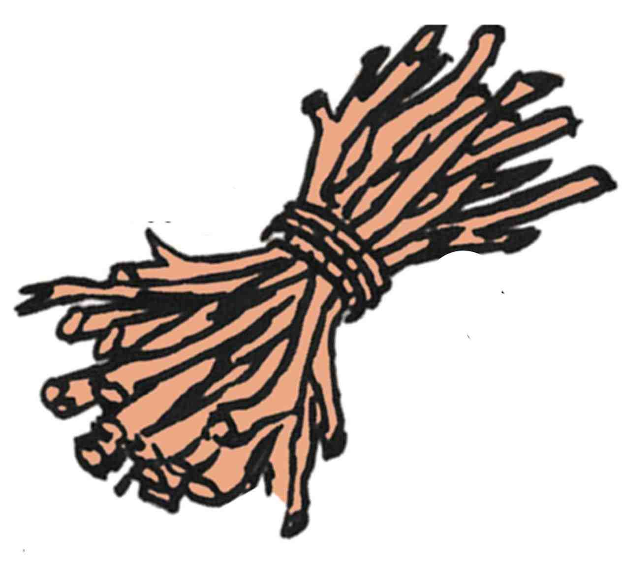Stick clipart wood stick. Pencil and in color