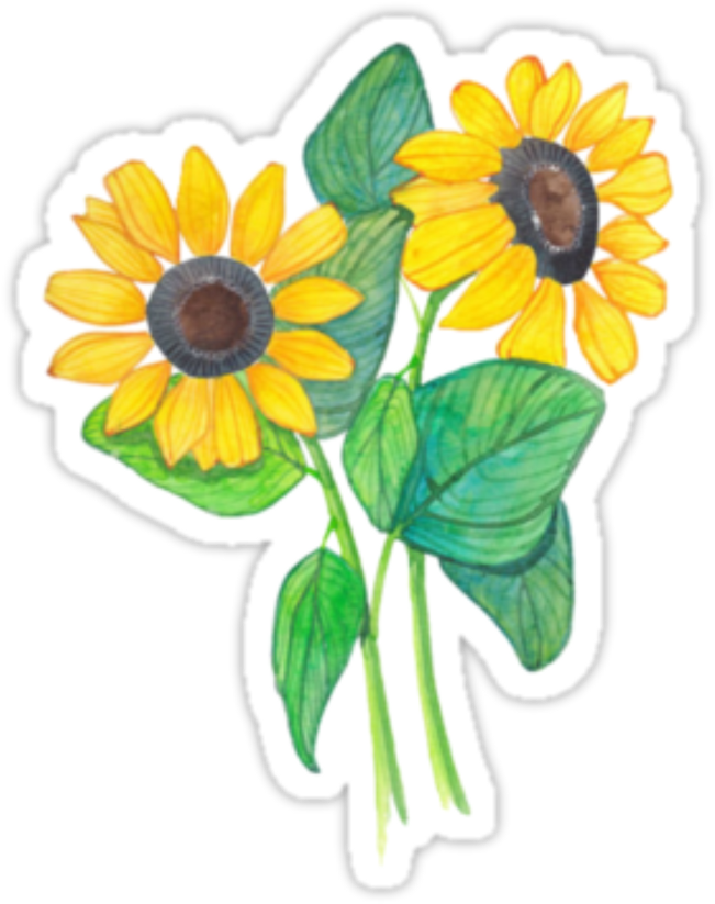Sticker tumblr png. Download flowers picsart