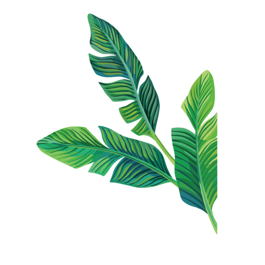 Stickers transparent plant. Tropical aesthetic cute filter