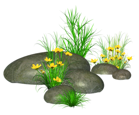 Stone clipart aquarium stone. Stones with grass and