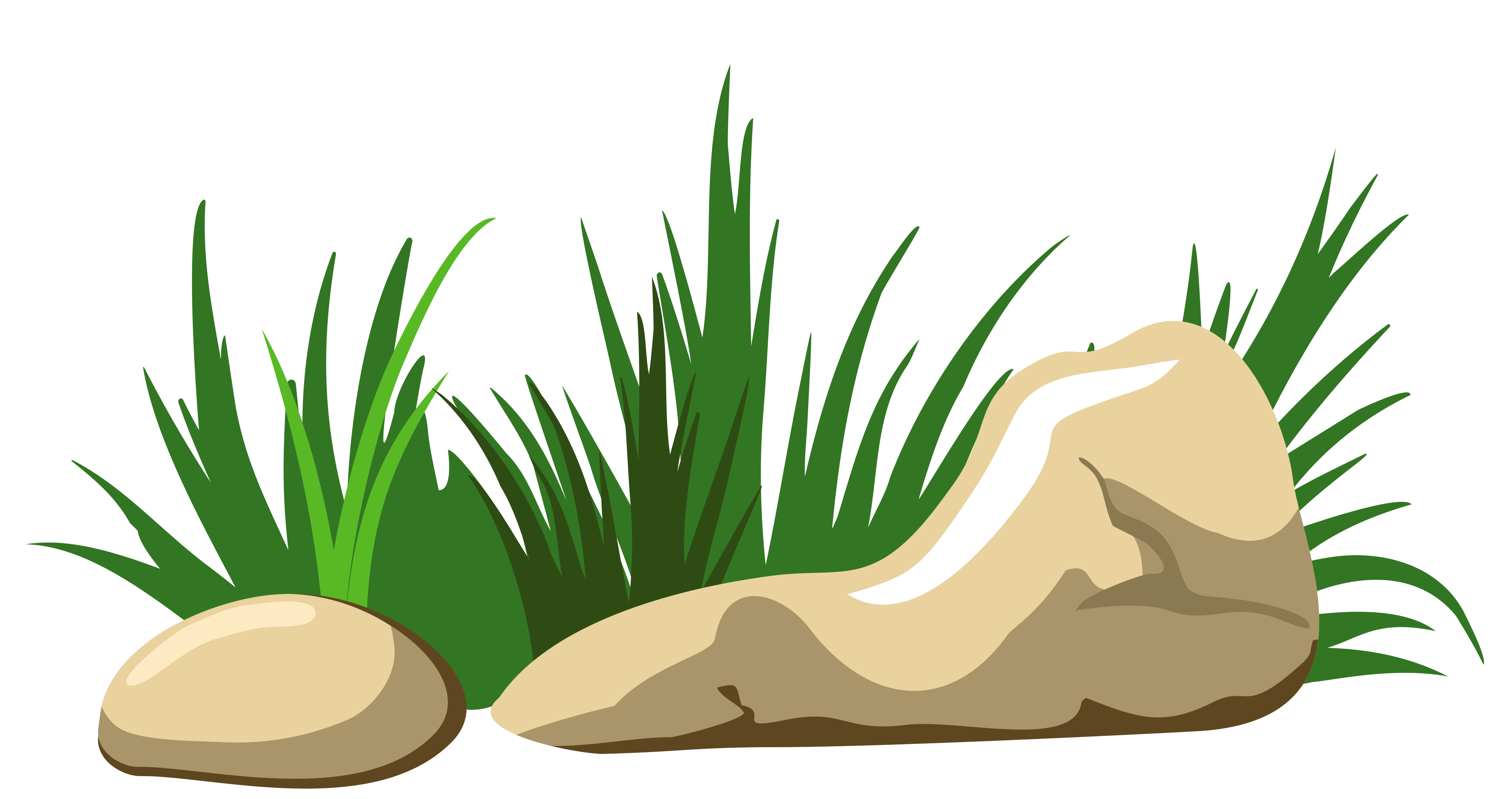 Vector grass png. And stones transparent clipart