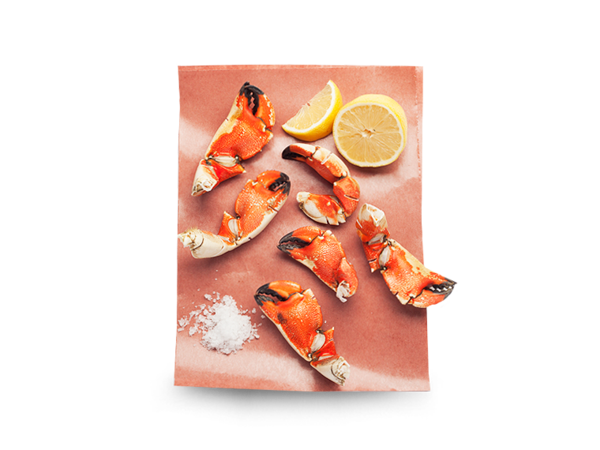Stone crab claw png. Claws pusateri s