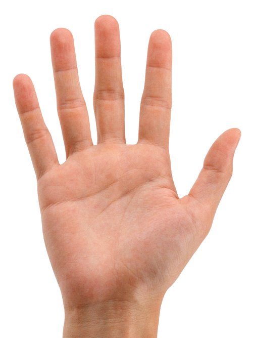 Stop hand png. Hands transparent images all