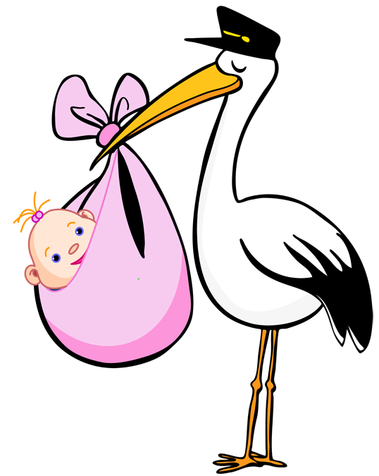 Stork vector baby drawing. Girl clipart