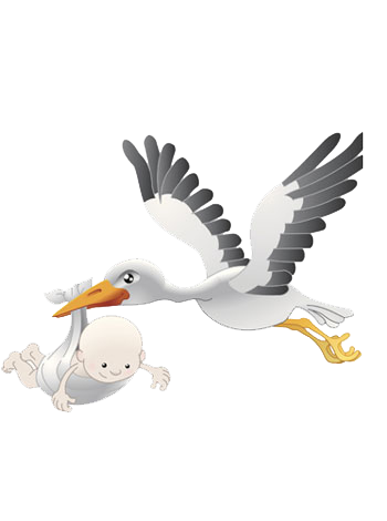 Stork vector baby drawing. And clip art clipart