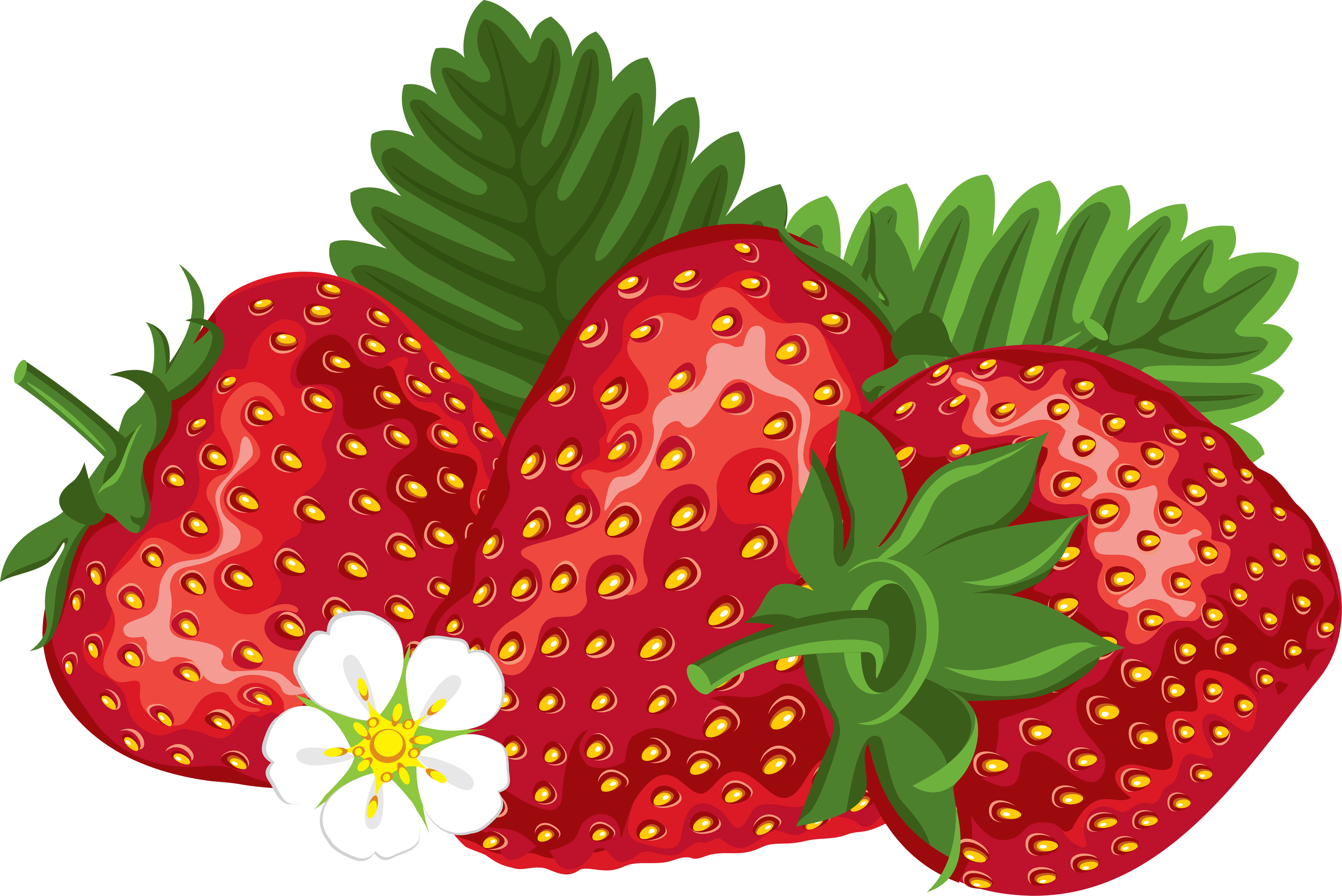 Strawberries clipart png. Strawberry image purepng free