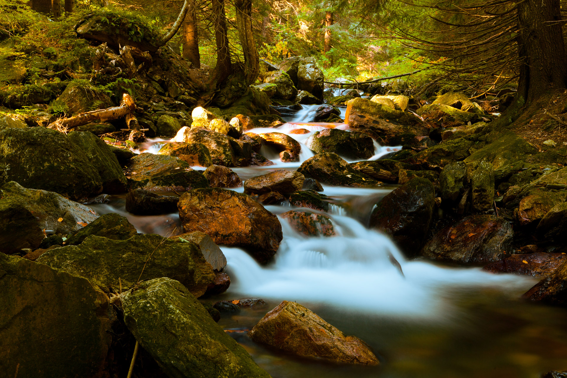 Stream clipart mountain stream. In forest free stock