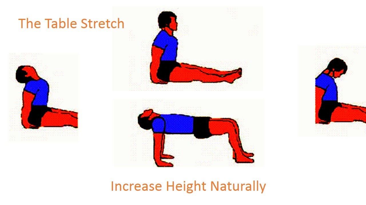 Stretching clipart light exercise. How to grow tall