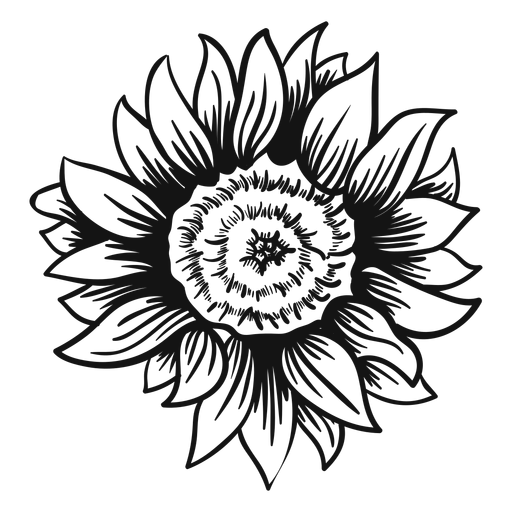 svg silhouette sunflower
