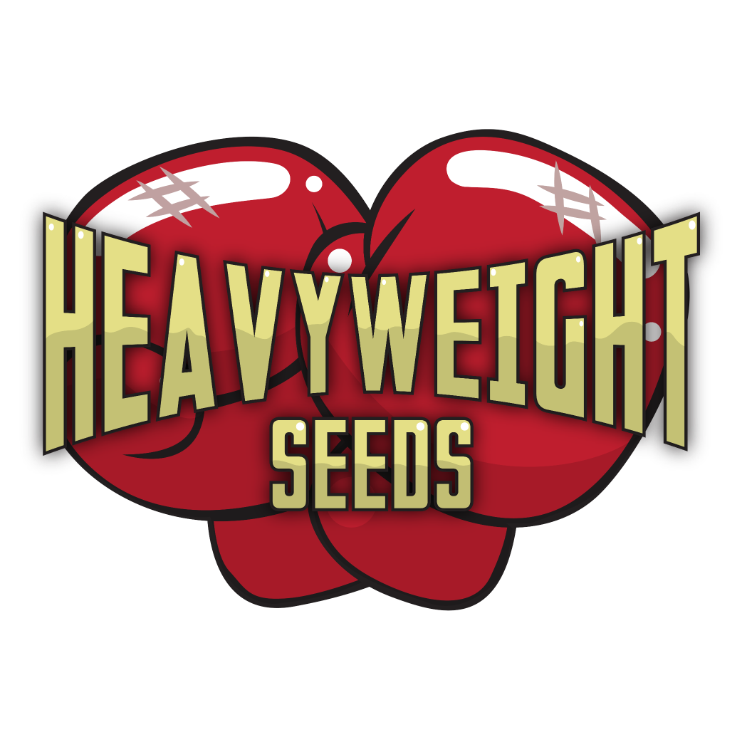 Strong clip loaded. Heavyweight seeds on twitter