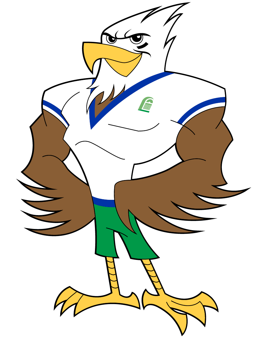 Hawk transparent mascot.